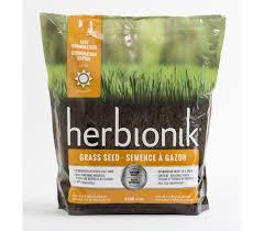 Semence à gazon Herbionick