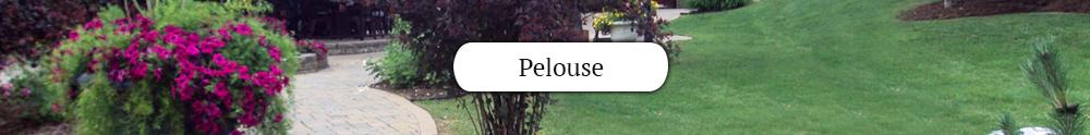 pelouse-comm.jpg