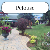 pelouse-commercial.jpg