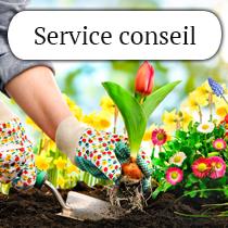 service-conseil2