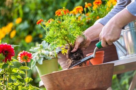 Reussir-ses-jardiniere-1