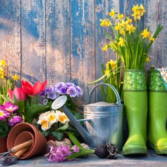 Reussir-sa-jardiniere