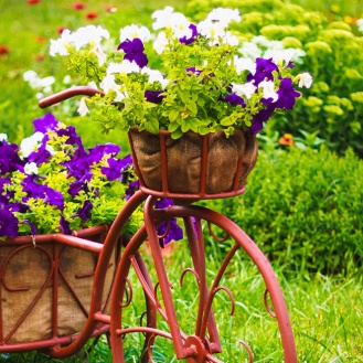 Reussir-sa-jardiniere idée concept design