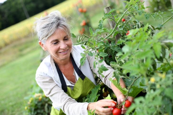 bienfaits-du-jardinage-meditation