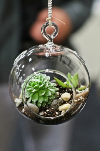 boule-en-verre-à-suspendre-terre-cailloux-mini-plantes-vertes