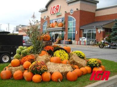 decoration-halloween-IGA-Ste-Marie-2