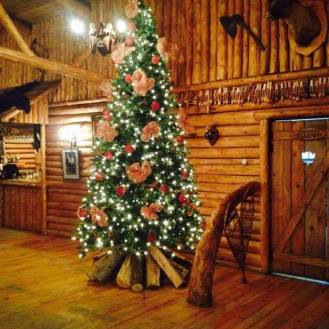 Décoration de Noel: Prix variés